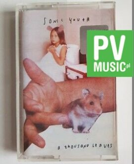 SONIC YOUTH A THOUSAND LEAVES audio cassette