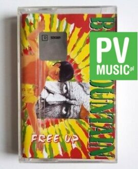 BIG MOUNTAIN FREE UP audio cassette