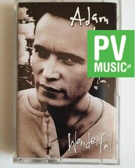 ADAM ANT WONDERFUL audio cassette