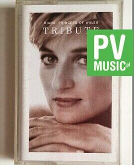 DIANA PRINCESS OF WALES audio cassette