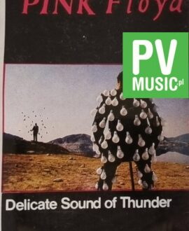 PINK FLOYD  DELICATE SOUND OF THUNDER vol.1 audio cassette